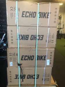 echo bike rogue