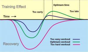 training effect, boot camp