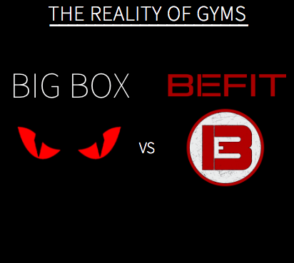 reality of gyms, big box gyms langley